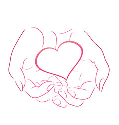 contour pink heart in women contour hands for vector image vector image
