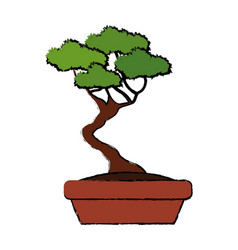 Bonsai tree nature pot plant decoration vector