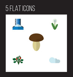 Flat icon nature set of floral champignon berry vector