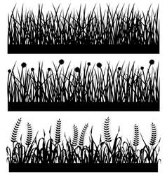 Grass plant flower silhouette a set of grass vector