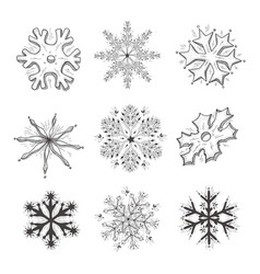 hand drawn of snowflake vector image