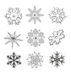 hand drawn snowflake vector image