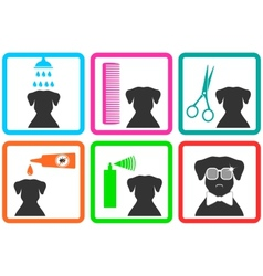 Pet care icons vector