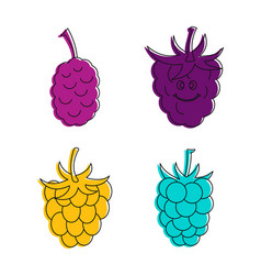 raspberry icon set color outline style vector image
