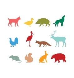 Wild animal silhouette and animal symbols vector