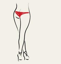 sketch symbol sexy woman leg vector image vector image