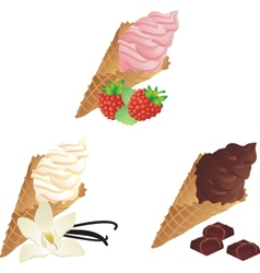 Different sorts of Ice Cream vector image