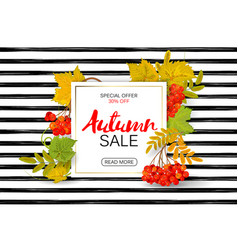 autumn sale poster with bright colorful leaves vector image