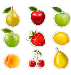 Collection fruit stickers vector