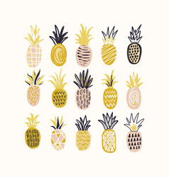 Collection of decorative pineapples of various vector