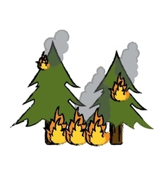 drawing wildfire destroys pines smock vector image