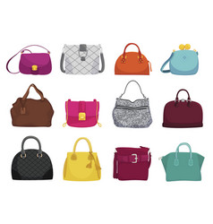fashionable woman bags flat vector image