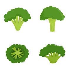Green broccoli icon set flat style vector