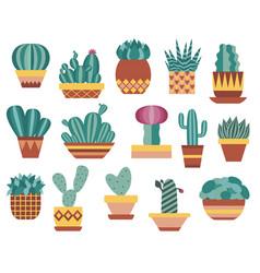 indoor cactus and succulent set in flat design vector image