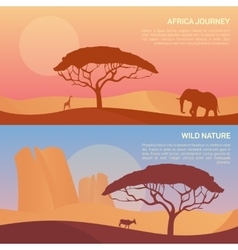 landscape in savanna vector image