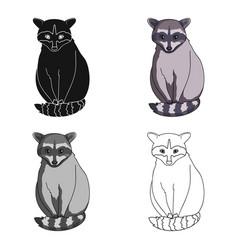 Raccoonanimals single icon in cartoon style vector