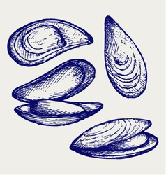 Cooked lipped mussel vector image vector image