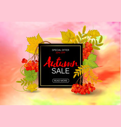 Autumn rowan banner on a bright background vector