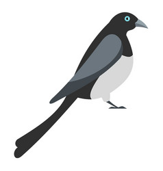Big magpie icon flat style vector