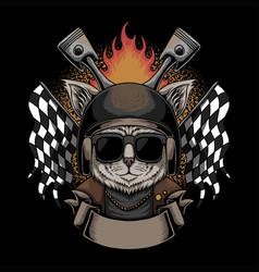Cat helmet motorcycle vector
