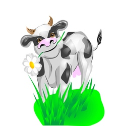 cow on a green lawn vector image