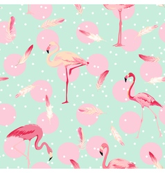 Flamingo Bird Background Flamingo Feather vector image