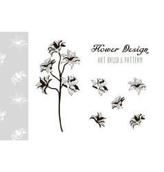 flower design art brush and pattern vector image