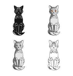 gray catanimals single icon in cartoon style vector image