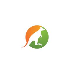 kangaroo logo icon vector image