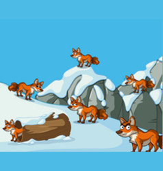 Many foxes on snow mountain vector