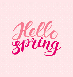 phrase hello spring brush pen lettering isolated vector image