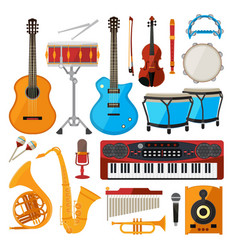 bongo drums guitar and other musical instruments vector image