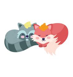 bashower cute sleeping and raccoon cartoon vector image