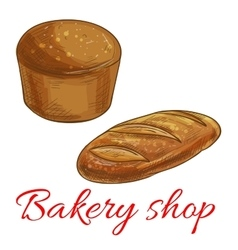 Bread sketch icons for bakery shop vector
