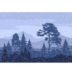 Christmas Winter Mountain Landscape vector image