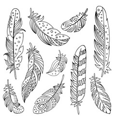 decorative set feathers in ethnic style vector image