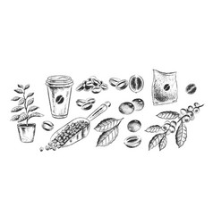 Hand drawn black and white coffee set vector