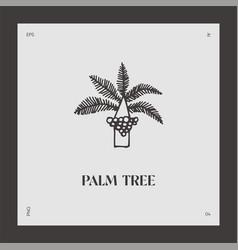hand drawn palm tree logotype coco vector image