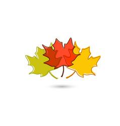 Set leaves hand drawn decorative elements vector