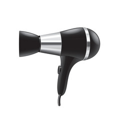 hair dryer isolated vector image vector image