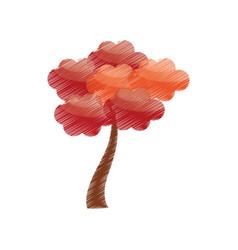 drawing sakura tree japan vector image vector image