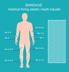 Bandage medical reticulate-tubular retainer vector