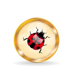 Button with ladybug vector