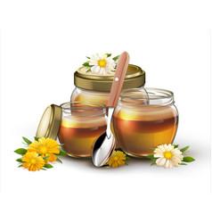 honey in jars on white background vector image