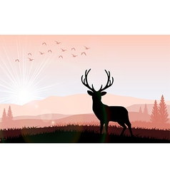 silhouette a deer feeding in bright sunset vector image