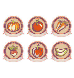 vintage set labels emblems fresh vegetables vector image