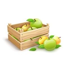 Apple fruits garden harvest vector image vector image