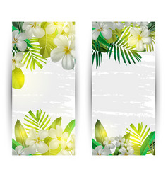 summer vertical banner vector image