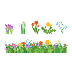 cartoon garden flowers and element set vector image