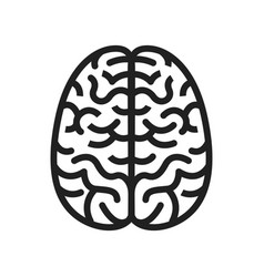 concept of brain icons vector image